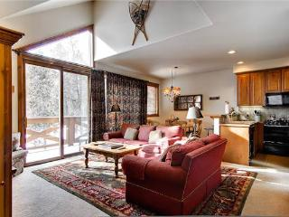 Saddlewood Bluff Court #35 - Breckenridge vacation rentals