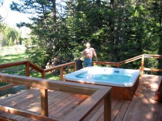 Chuck's Tahoe Apache Cabin - South Lake Tahoe vacation rentals