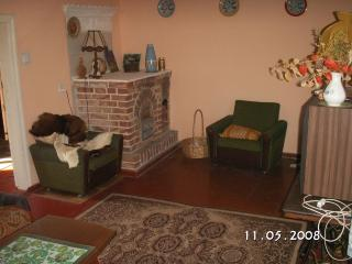 House in the Tuchola Woods -heaven for bikers - Tuchola vacation rentals