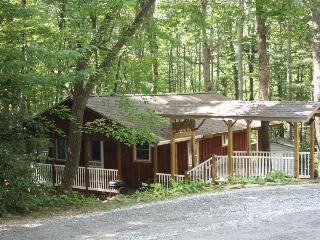 Falling Water Cottage on Stream! - WiFi - Fenced - Horse Shoe vacation rentals