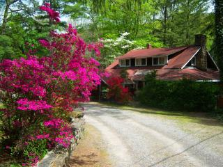 Rustic with Comfort Cabins Great for Groups - Chimney Rock vacation rentals