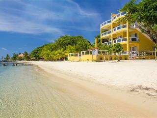 Villa Del Playa Unit #3 107 - West End vacation rentals