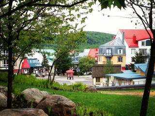BEST LOCATION, BEST PRICE, ALL AMENITIES - Mont Tremblant vacation rentals