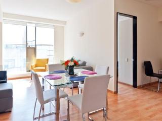 Historic Center Near Reforma Pool Airport Pick-up - Mexico City vacation rentals