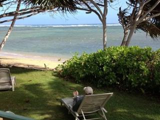 front yard - Hale O Pu' Hala - Ualapue - rentals