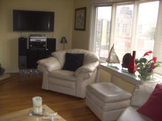 Downtown 3 Bed 2.5 Ba Elegant Townhouse 2 Car Gar - Louisville vacation rentals