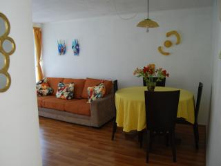 Furnished apartment two blocks from the Metro Park Bustamente - Santiago vacation rentals
