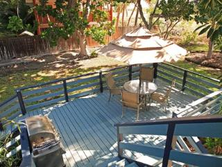 Sunny Bamboo Beach Cottage ~ RA6265 - Puako vacation rentals