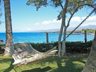 Ocean front Aina Malia on Waialea Bay ~ RA6259 - Waimea vacation rentals
