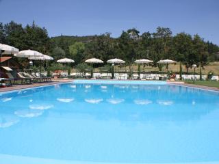 House Holiday In Tuscany - Arezzo vacation rentals