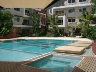 Economic,beautifull, 2 Bedroom With Big Pool - Playa del Carmen vacation rentals