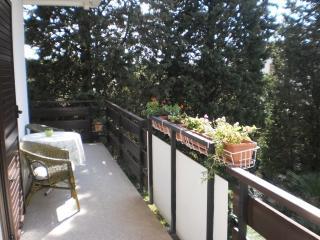 Apartment Jerka - 11461-A1 - Kaprije vacation rentals