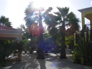 Villa Morotin Lower. - Kralendijk vacation rentals