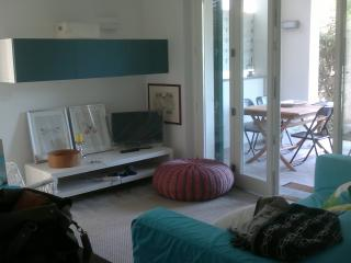 house in Tuscany - Forte dei Marmi - Forte Dei Marmi vacation rentals