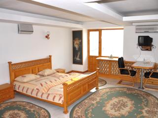 Apartment in the center of Lugansk - Luhansk vacation rentals
