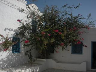 Dar Zina - B&B to belgo-tunisian couple - Djerba vacation rentals
