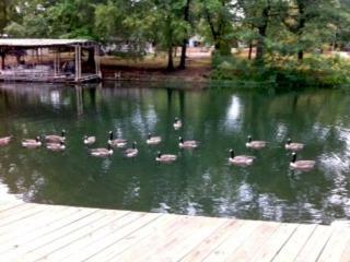 Lakefront Home 2 Master Bedroom w/on suite bath - Arkansas vacation rentals