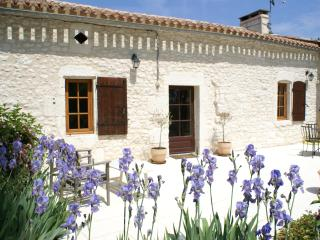 Farmhouse near Duras, Lot-et-Garonne, France - Lot-et-Garonne vacation rentals