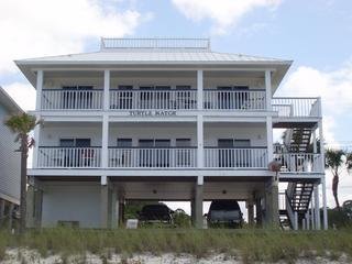 Turtle Watch - Mexico Beach vacation rentals