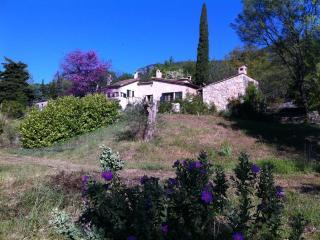 Beautiful authentic Provence villa - Tourrettes-sur-Loup vacation rentals