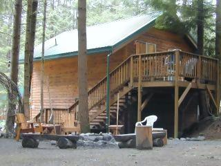 The Eagle's Nest-Greenwater, WA - THE EAGLE'S NEST @ Mt. Rainier-$135-$160 Night!! - Greenwater - rentals
