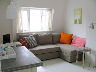 AmstelFabApartment - Amsterdam vacation rentals