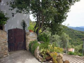 Cosy Apartment surrounded by nature,close to Ronda - Cortes de la Frontera vacation rentals