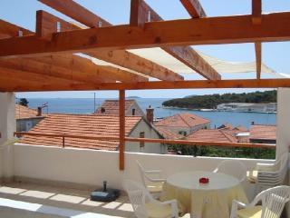 Apartments Svjetlana - 28461-A1 - Sibenik-Knin County vacation rentals