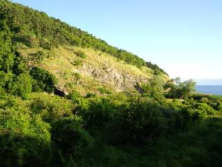 Vila Sara - Woodston vacation rentals