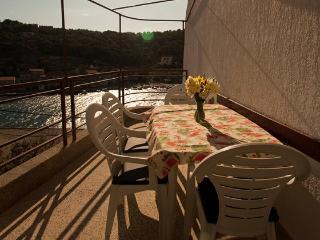 Apartments Senka - 28561-A1 - Zirje vacation rentals