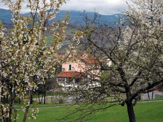 Agriturismo La Celestina - Piana Crixia vacation rentals