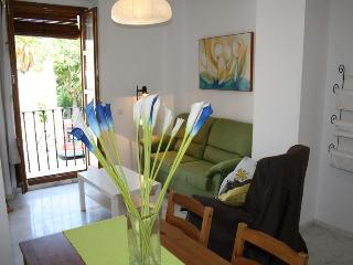 VALLEY GARDENS APARTMENT - Seville vacation rentals
