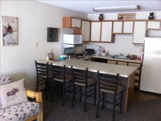 Winter Park CO from $65.00 nt. during ski season ! - Winter Park vacation rentals