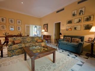 Flowers Terrace Apartment 10 pax - Sevilla La Nueva vacation rentals