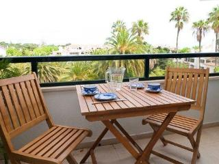 Beautiful apartment in the luxury of Monte Estoril - Costa de Lisboa vacation rentals