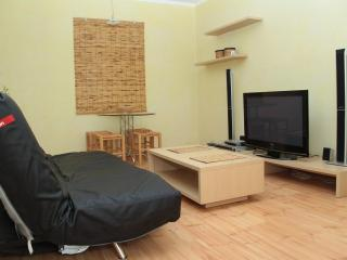 Bamboo - Two room apartment on Independence square - Ukraine vacation rentals
