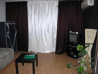 Zebra one room apartment on Khreschatik - Kiev vacation rentals