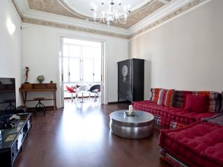Stunning 2 bedroom 2 bathroom in city center - Barcelona vacation rentals