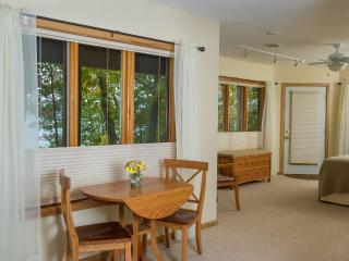 Luxury Iris Apartment on beautiful Seneca Lake, NY - Dundee vacation rentals