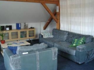 Vacation Apartment in Saarbrücken - natural, beautiful, comfortable (# 3972) - Saarland vacation rentals