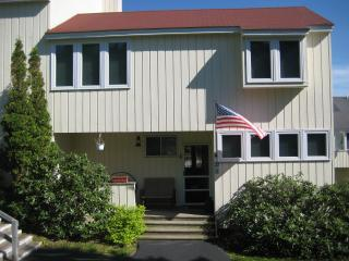 Front View - Charming Townhouse - Roxbury - rentals