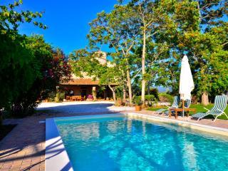 Villa Toscana Mare - Bibbona vacation rentals