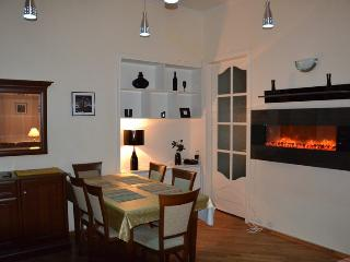 Spacious 4 Bedroom + Living in center - Ukraine vacation rentals