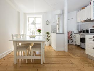 Family Friendly Apartment in Best Part of Town - Copenhagen vacation rentals