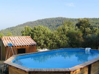 Beautiful house in Provence - Claviers vacation rentals