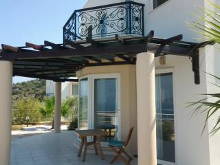 Olive Trees 3 bedroom villa - Gulluk vacation rentals