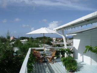 Stunning Beaches and Somnia Dreams come true - Christ Church vacation rentals