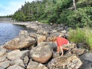 Murphy's Landing - Ferryland vacation rentals