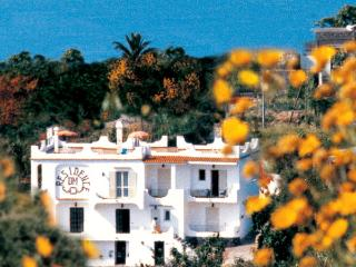 Residence Di Meglio  - Ischia Apartments  near Maronti beach - Ischia vacation rentals