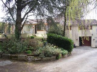 Courberive. a hidden gem in the heart of France - Cirieres vacation rentals